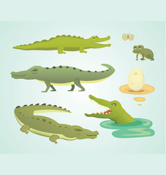 Crocodile cute character set aligator vector