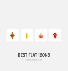 flat icon leaves set of maple aspen alder and vector image