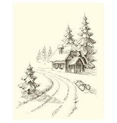 nature in winter season pine trees and a house in vector image