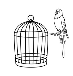 Outline drawing a budgie is sitting near cage vector