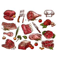 sketch icons of fresh butchery meat vector image