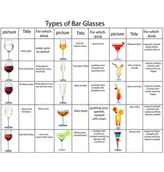 Types and purpose bar glasses vector
