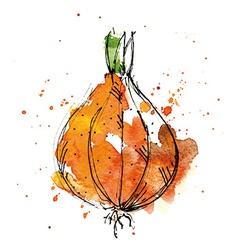 Watercolor of onion vector image