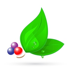 3d leaf icon vector image