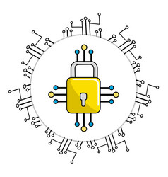 padlock with circuits to security dgital vector image