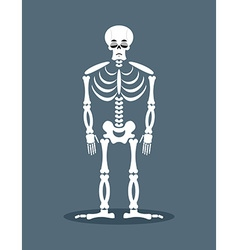Sad skeleton Frustrated skull Sorrowful dead vector image vector image