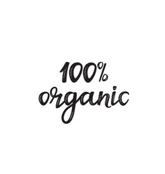 100 percent organic hand drawn lettering isolated vector image
