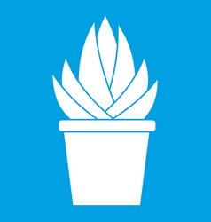 Aloe vera plant icon white vector