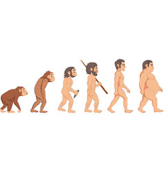 cartoon human evolution vector image