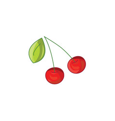 cherry icon on a white background vector image