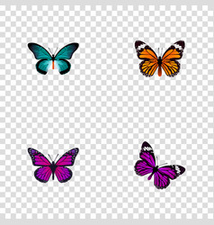 set of beauty realistic symbols with tailed-blue vector image