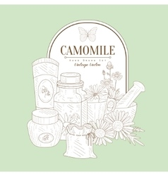 Vintage Sketch With Camomile Cosmetics vector image
