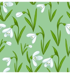 Floral seamless background with white snowdrops vector image