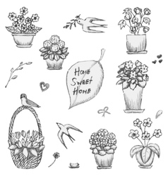 Hand drawn indoor plants flowers in vases and vector image