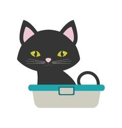 small cat sitting grooming pet bathtub vector image vector image