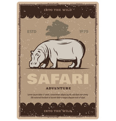 African safari tour vintage banner with hippo vector