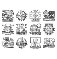 Basketball sport players item icons vector