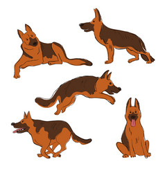 Collection shepherd dog icons vector