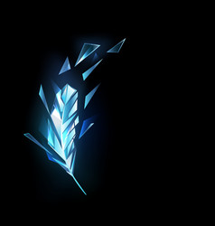 Crystal ice feather vector