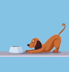 dog eating cartoon vector image