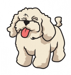 poodle vector image vector image