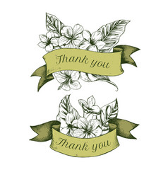 ribbon design of allamandas with thank you sing vector image
