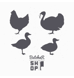 Set of farm birds silhouettes Chicken turkey vector image