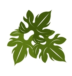 green tree leave graphic vector image