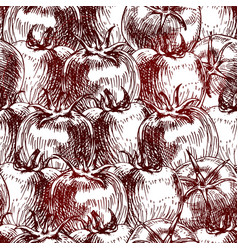 seamless pattern of tomato background vector image