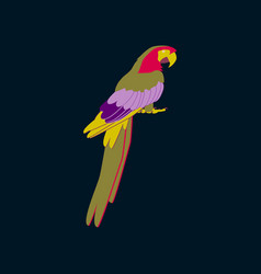 in flat style of parrot vector image