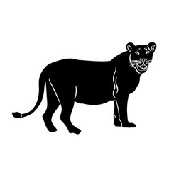 isolated lion silhouette vector image vector image