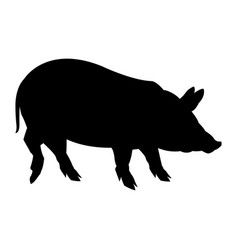 Cute pig cartoon animal farm image vector
