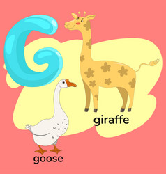 Letter g from children s alphabet vector