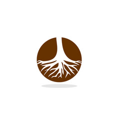 Root circle logo vector
