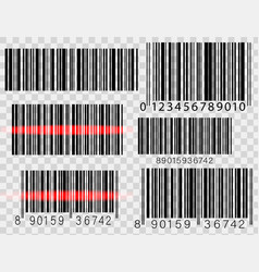 set of barcodes isolated on white background vector image