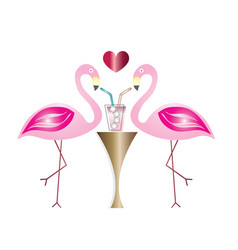 Two flamingos in love drinking cocktail vector