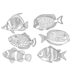 underwater tropical fishes coloring page set vector image