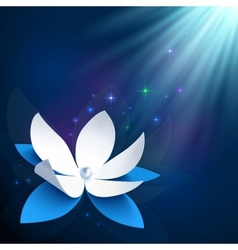 Night cosmic flower background vector image vector image