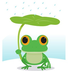 frog in the rain vector image vector image
