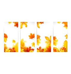 Autumn banners with leaves vector image