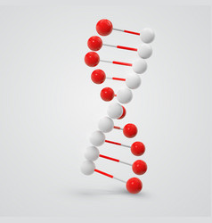 abstract colorful dna molecule isolated on white vector image