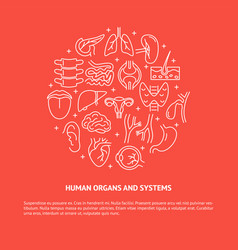 anatomy round banner with human organs and text vector image
