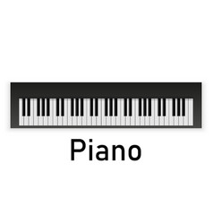 set of piano keys in black and white vector image