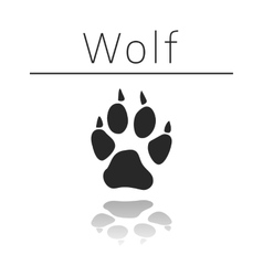 Wolf animal track vector image vector image