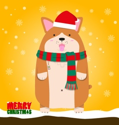 Merry christmas cute big fat welsh corgi dog vector