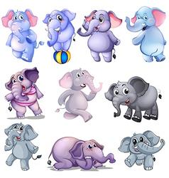 A group of elephants vector