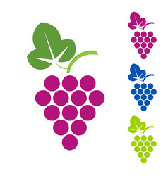 Grape sign logo wine production of wines vector