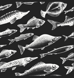 hand drawn fish seamless pattern seafood on chalk vector image