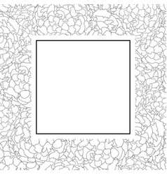 marigold outline banner card vector image