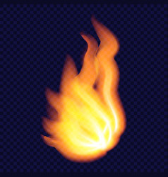 natural fire concept background realistic style vector image